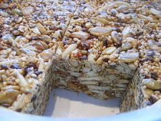 Birdseed Bars - My whole family LOVES these! We use raw seeds/nuts vs roasted and I add a bit more peanut butter, but other than that I follow the recipe.