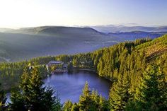 Germany trip plan: The Black Forest - a finalist in the votes for the new 7 natural world wonders