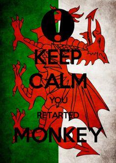 KEEP CALM YOU RETARTED MONKEY
