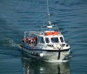 Sit back and relax on the Puffin Island Pleasure Cruise, Anglesey. Enjoy local birdlife, grey seals and complete guided tour. Anglesey, Snowdonia, Island Cruises, Sea Fishing, North Wales, Sea Birds, During The Summer, Days Out, Tour Guide