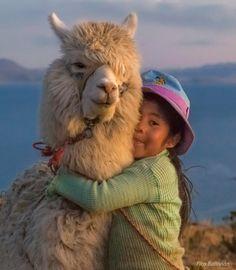 Bolivia                                                       …                                                                                                                                                                                 More