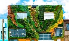 Planted Design's community-built living wall adds a lush green mural to the colorful artwork in the Mission District of San Francisco. Jardin Vertical Artificial, Vertical Green Wall, Green Facade, Colorful Artwork, Garden Seating, Facade Design, Plant Design, Lush Green, Gardening For Beginners