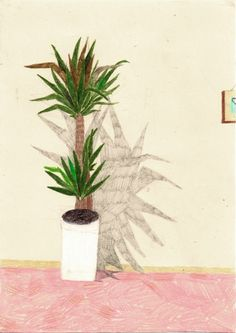 ; reminds me of aunt Evy's plant that had a shadow painted on the wall behind it