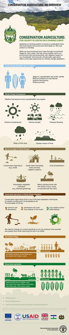 Conservation agriculture: an overview - We must protect the environment that…