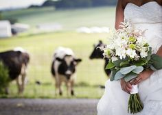 On Sunny Slope Farm -	Virginia Venues - Outdoor, rustic farm wedding