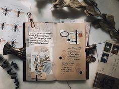 Amanda Lee, Day, Journalling, Journal Ideas, Instagram, Lifestyle