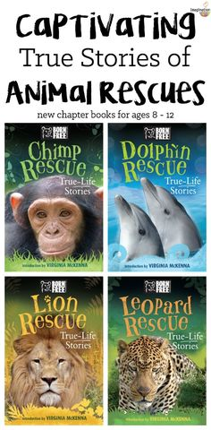 animal loving kids, you will devour these heart-tugging chapter books about real animal rescues! Books For Boys, Childrens Books, Wild Animal Rescue, Class Library, Library Books, Animal Books, Animal Magazines, Good Books, Books To Read