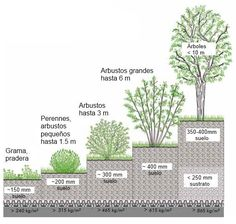 Cinco ejemplos de Sistema de Techo Verde Iintensivo.                                                                                                                                                                                 Más #greenroofs #techosverdes