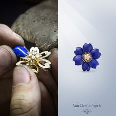 Discover Van Cleef & Arpels' Rose de Noël clip in lapis lazuli. Petals are selected according to their appearance and color to compose a single harmonous corolla.