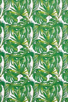 Chasing Paper Green Leaf Removable Wallpaper - Urban Outfitters