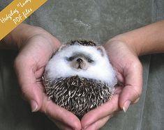 """PDF Hedgehog  """"lump"""" Needle Felted Animal."""