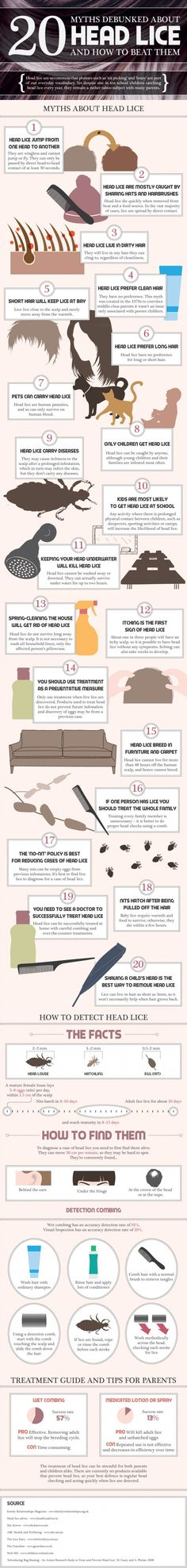 20 Facts About Headlice [Infographic]  For future reference... Hopefully I won't need it!!!