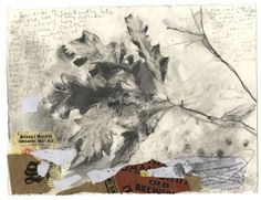 Seven Useful Shade Tolerant Groundcovers For Tough Spots Kurt Jackson, The Dart Kurt Jackson, Leaf Images, Plant Art, London Art, Mixed Media Painting, Natural Forms, Nature Inspired, Sketchbooks, Drawings
