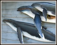 HUMPBACK WHALES wood carvings nautical wall mount by WOODNARTS, $475.00