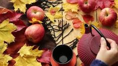 Image result for autumn tea table under trees