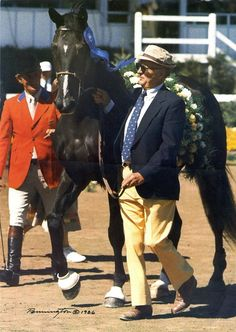 1000 Images About Horses On Pinterest Olympic Games