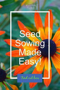 117 Best Growing Seeds Diy Images In 2020 Plants Growing Seeds
