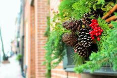 Forage for materials to make your own Christmas wreath with our handy guide http://bit.ly/2gYZD9i