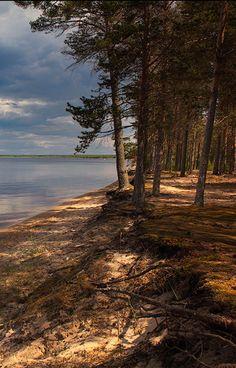 Somewhere in Karelia (Russia) by Dmitry Shamin
