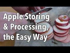 How to store fresh apples safely--plus, make chewy apple rings and homemade apple juice! Healthy Juice Recipes, Healthy Juices, Healthy Smoothies, Healthy Drinks, Dried Apples, Fresh Apples, How To Store Apples, Homemade Apple Juice, Juice Fast