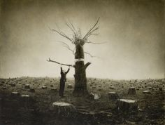 Robert and Shana ParkeHarrison : Architect's Brother : Kingdom - Arbor Day