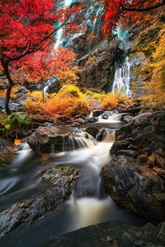Amazing waterfall colorful forest in Thailand Beautiful Nature Pictures, Beautiful Landscapes, You Make Beautiful Things, Beautiful Places, Waterfall Fountain, Autumn Scenes, Quelques Photos, Autumn Photography, Fall Pictures