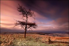 Moonset on Kinpurney Hill - by angus clyne