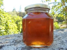 Greek Raw Honey Flower&Forest Honey from by MelirrousBees on Etsy Vitex Agnus Castus, Unfiltered Honey, How To Calm Nerves, Honey Benefits, Natural Vitamins, Raw Honey, Oak Tree, Blackberry, A Food