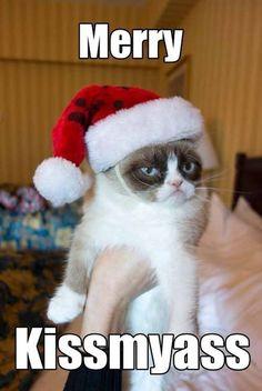 Grumpy Christmas Cat jajajaja