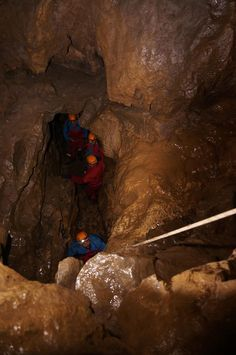 Stag group caving