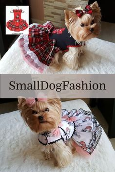 Girl Dog Clothes, Small Dog Clothes, Puppy Clothes, Dog Clothes Patterns, Summer Dog, Dog Items, Dog Harness, Dog Leash, Girl And Dog