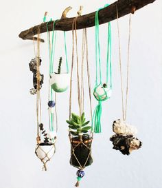 plant hangers, hanging plants, burnt orange, billabong, pot plants, baskets, hanging planters, branches, bohemian