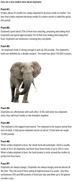 Facts about elephants for kids http://firstchildhoodeducation.blogspot.com/2013/08/facts-about-elephants-for-kids.html