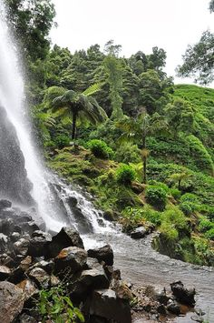 Parque Natural da Ribeira dos Caldeiros - Flip - Picasa Webalbums
