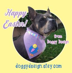 Happy Easter to you and your dog!