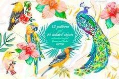 Watercolor Tropic by Elizaveta on @creativemarket