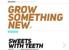 Minimalist website design inspiration: Red Antler