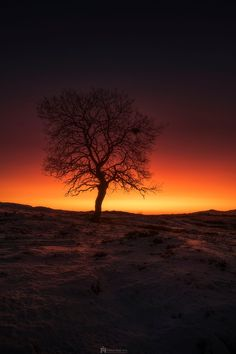 Twilight silhouette near Lofoton, Norway -- by Fred Åge Hol on 500px