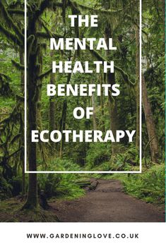 how to use eco therapy to help your mental health and wellbeing. What is eco therapy and how can nature help depression. Mental Health Blogs, Mental Health Benefits, Mental Health And Wellbeing, Improve Mental Health, Mental Health Awareness, Health Tips, Health And Wellness, Mental Health Services, Natural Parenting