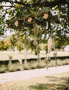 hanging bottles