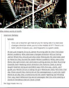 The Marauders   Sirius, James and Remus - first year at hogwarts