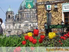 Berlim sob um ângulo que você nunca viu: http://www.agendaberlim.com/2013/03/13/berlim-sob-um-angulo-que-voce-nunca-viu/