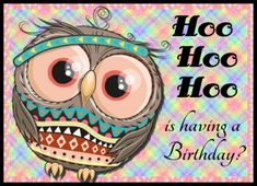 Hoo is having a birthday. Cute owl card birthday wishes. Free online Hoo Hoo Hoo ecards on Birthday Happy Birthday Penguin, Cute Happy Birthday, Birthday Wishes Funny, Birthday Songs, Boy Birthday, Birthday Sparklers, Birthday Fireworks, Beautiful Birthday Messages, Anniversary Congratulations