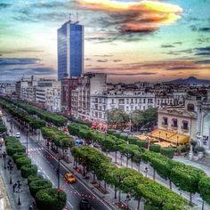 تونسي - Tunis