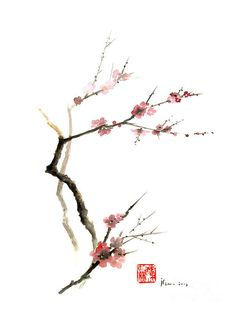 Japan Print featuring the painting Cherry Blossom Sakura Flowers Pink Red White Brown Black Tree Flower Watercolor Painting by Johana Szmerdt