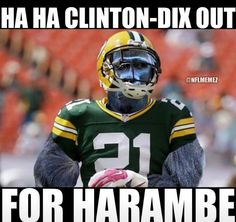 Clinton-Dix out for Harambe