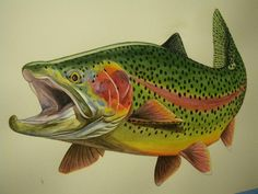 Mvtoro's Trout Watercolor Paintings - Arizona Fly Fishing Forums