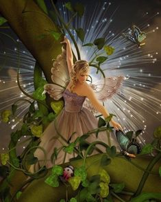 Fairy - Pin it by GUSTAVO BUESO-JACQUIER