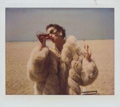 (fur coat, pearls, cat eye sunnies within polaroid frame)