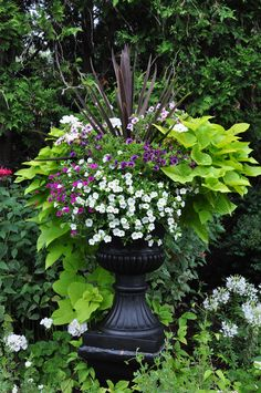 Traditional Garden Urns and Contemporary Containers :: Hometalk